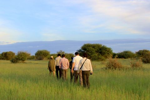 Walking Safari in Sambia